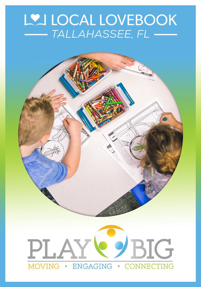 PLAYBIG THERAPY & LEARNING CENTER
